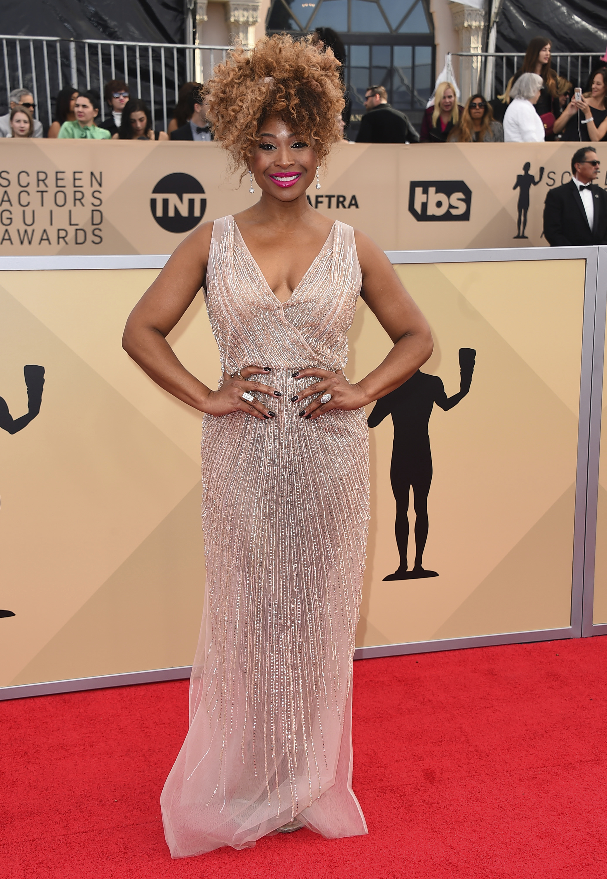 <div class='meta'><div class='origin-logo' data-origin='AP'></div><span class='caption-text' data-credit='Jordan Strauss/Invision/AP'>Tanika Ray arrives at the 24th annual Screen Actors Guild Awards at the Shrine Auditorium & Expo Hall on Sunday, Jan. 21, 2018, in Los Angeles.</span></div>