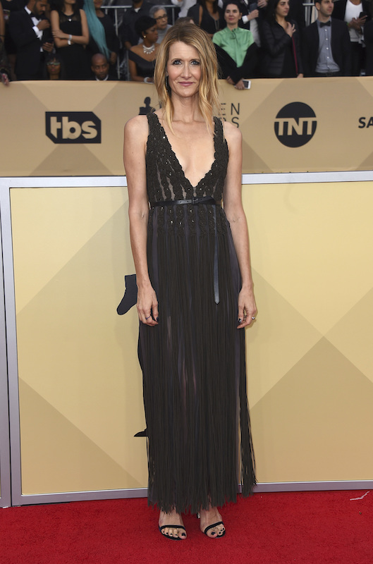 <div class='meta'><div class='origin-logo' data-origin='AP'></div><span class='caption-text' data-credit='Jordan Strauss/Invision/AP'>Laura Dern arrives at the 24th annual Screen Actors Guild Awards at the Shrine Auditorium & Expo Hall on Sunday, Jan. 21, 2018, in Los Angeles.</span></div>