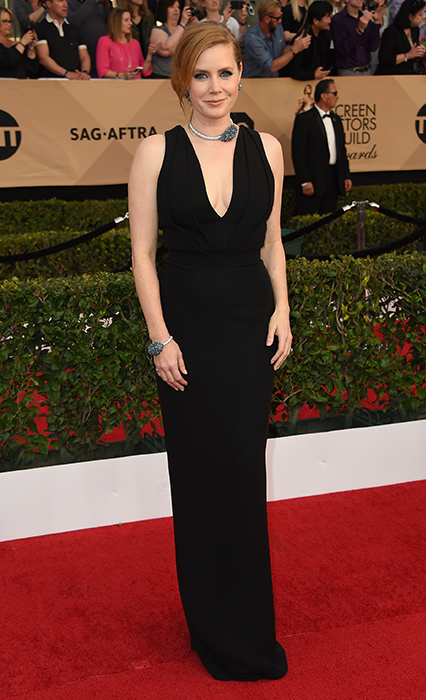 "<div class=""meta image-caption""><div class=""origin-logo origin-image ap""><span>AP</span></div><span class=""caption-text"">Amy Adams arrives at the 23rd annual Screen Actors Guild Awards at the Shrine Auditorium & Expo Hall on Sunday, Jan. 29, 2017, in Los Angeles. (Jordan Strauss/Invision/AP)</span></div>"