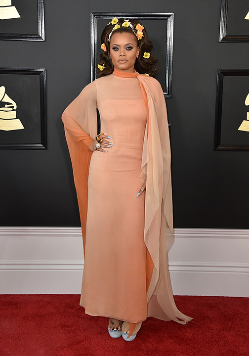 "<div class=""meta image-caption""><div class=""origin-logo origin-image none""><span>none</span></div><span class=""caption-text"">Andra Day arrives at the 59th annual Grammy Awards at the Staples Center on Sunday, Feb. 12, 2017, in Los Angeles. (Jordan Strauss/Invision/AP)</span></div>"