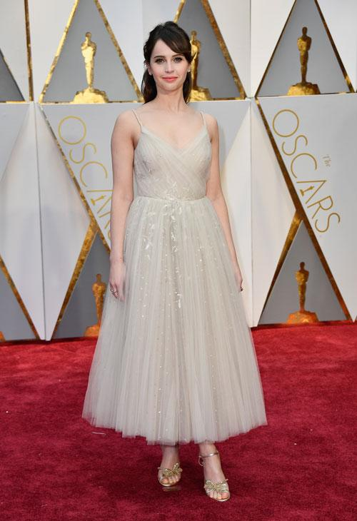 <div class='meta'><div class='origin-logo' data-origin='none'></div><span class='caption-text' data-credit='Photo by Frazer Harrison/Getty Images'>Actor Felicity Jones attends the 89th Annual Academy Awards at Hollywood & Highland Center on February 26, 2017 in Hollywood, California.</span></div>