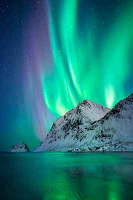 <div class='meta'><div class='origin-logo' data-origin='Creative Content'></div><span class='caption-text' data-credit='Dale Sharpe and Karlie Russell/DK Photography'>Dale Sharpe celebrates after proposing to Karlie Russell under stunning Northern Lights in Lofoten, Norway.</span></div>