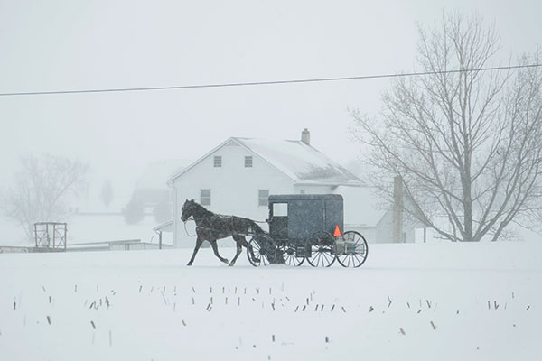 <div class='meta'><div class='origin-logo' data-origin='none'></div><span class='caption-text' data-credit='Matt Slocum/AP Photo'>A horse and buggy drive through a winter snow storm, Tuesday, March 14, 2017, in Salisbury, Pa.</span></div>