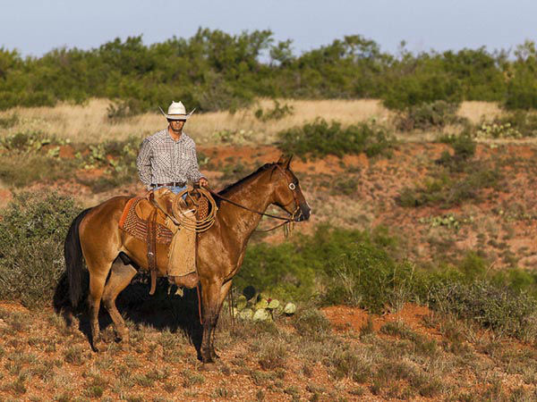"<div class=""meta image-caption""><div class=""origin-logo origin-image none""><span>none</span></div><span class=""caption-text"">Sprawling across 510,527 acres, the W.T. Waggoner Estate Ranch is one of the largest ranches in the United States (Photo/Briggs Freeman )</span></div>"