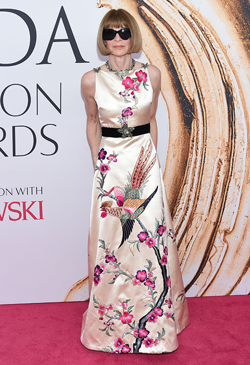 "<div class=""meta image-caption""><div class=""origin-logo origin-image wpvi""><span>wpvi</span></div><span class=""caption-text"">Anna Wintour arrives at the CFDA Fashion Awards on Monday, June 6, 2016, in New York. (Evan Agostini/Invision/AP)</span></div>"