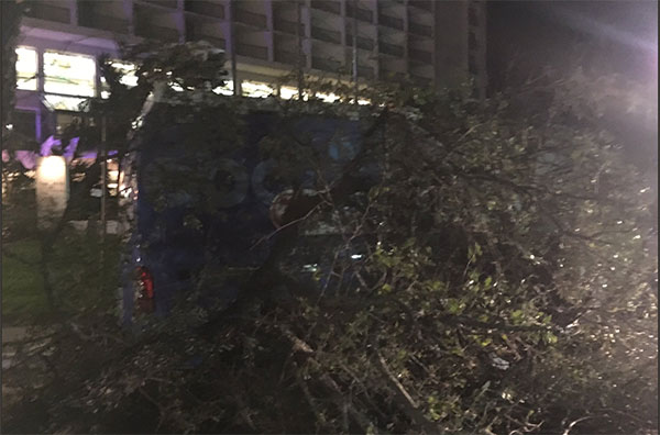 <div class='meta'><div class='origin-logo' data-origin='none'></div><span class='caption-text' data-credit='Briana Whitney of ABC affiliate KIII'>A KIII news truck is blocked by a tree in Corpus Christi, Texas</span></div>
