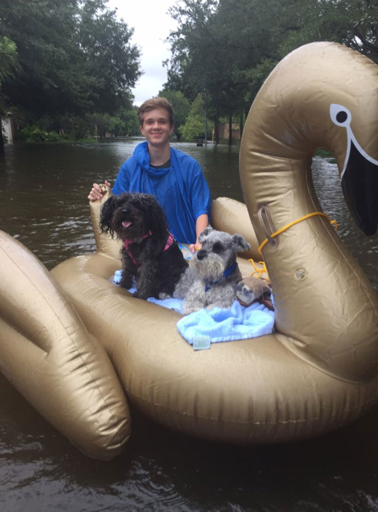 "<div class=""meta image-caption""><div class=""origin-logo origin-image none""><span>none</span></div><span class=""caption-text"">Vian Janse van Rensburg and his family in Katy, Texas, got their dogs to safety using what they had, an inflatable swan. (Mia Rensburg/Twitter)</span></div>"