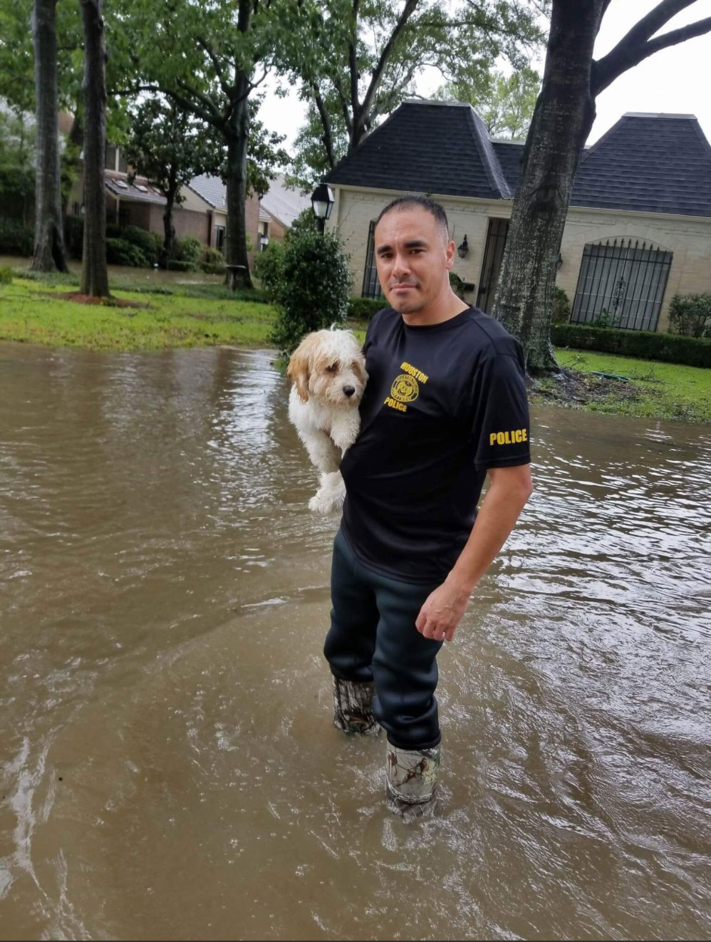 "<div class=""meta image-caption""><div class=""origin-logo origin-image none""><span>none</span></div><span class=""caption-text"">The Houston Police rescues a dog stranded by the flood. (houstonpolice/Twitter)</span></div>"