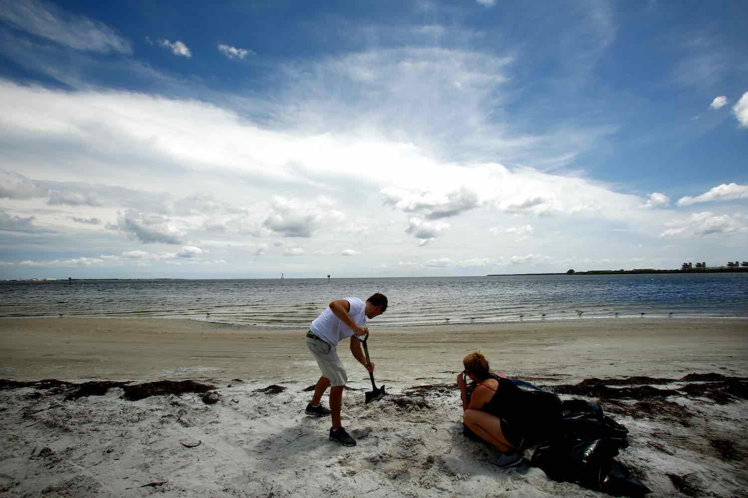 "<div class=""meta image-caption""><div class=""origin-logo origin-image kgo""><span>kgo</span></div><span class=""caption-text"">Tampa residents load sandbags with beach sand at Gandy Beach as residents and visitors in Florida prepare for, and evacuate ahead of, Hurricane Irma on September 09, 2017. (Brian Blanco/Getty)</span></div>"