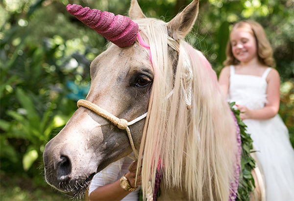 Photos Little Girl Travels To Hawaii To Meet Unicorn