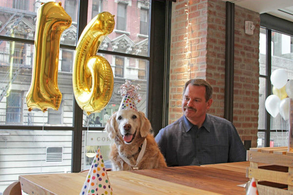 <div class='meta'><div class='origin-logo' data-origin='none'></div><span class='caption-text' data-credit='Photo/BarkPost'>And she was thrown a Sweet 16 birthday party that was attended by all her Texas Task Force 1 friends.</span></div>