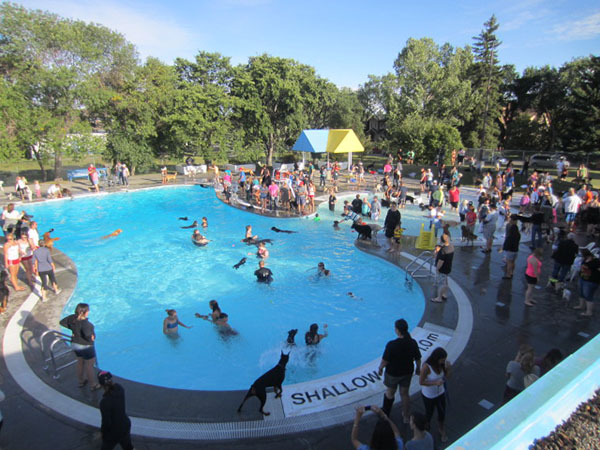 Calgary Dogs Celebrate End Of Summer With A Citywide Pool Party