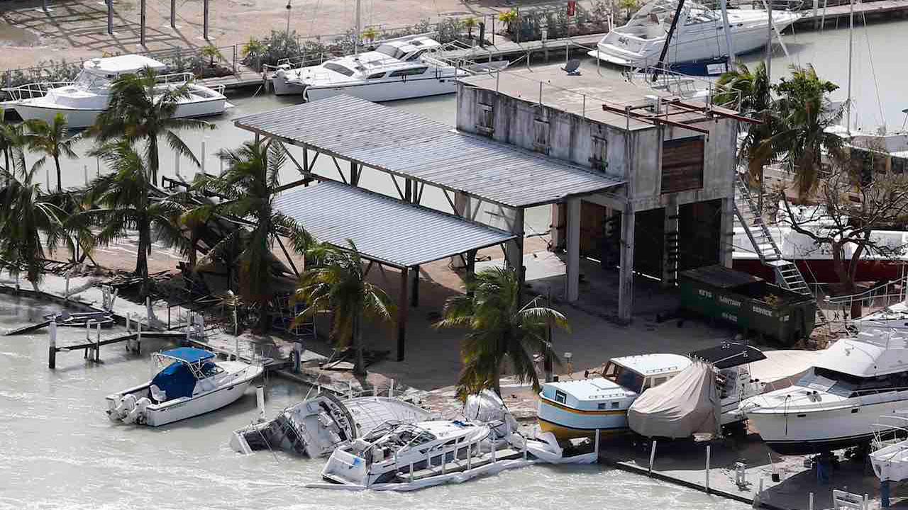 <div class='meta'><div class='origin-logo' data-origin='Creative Content'></div><span class='caption-text' data-credit='AP Photo/David Goldman'>Palm trees stand ripped of their fronds in the aftermath of Hurricane Irma in Marco Island, Fla., Monday, Sept. 11, 2017</span></div>