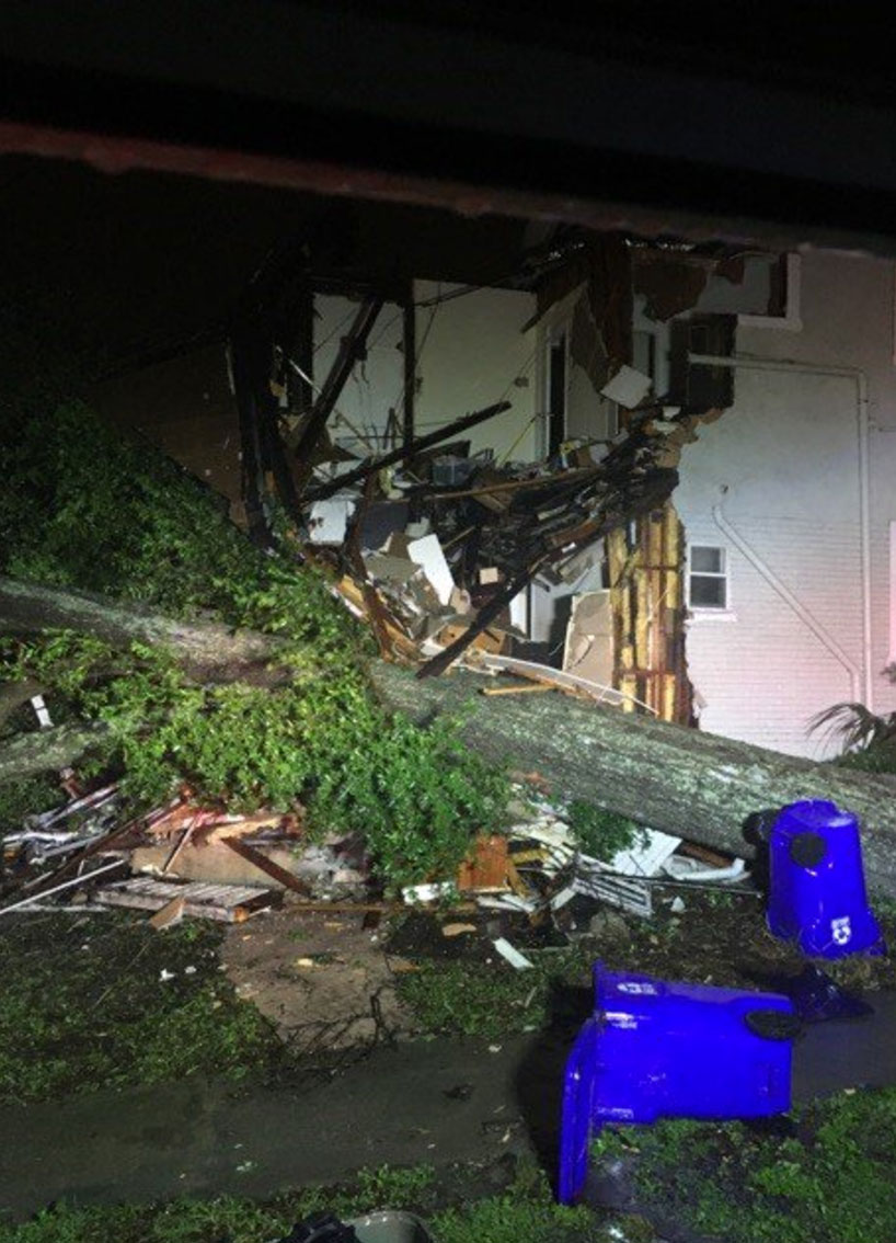 "<div class=""meta image-caption""><div class=""origin-logo origin-image none""><span>none</span></div><span class=""caption-text"">No injuries were reported when a massive tree fell on a home in Lakeland, Fla. Eight people were displaced. (Lakeland Fire/Twitter)</span></div>"