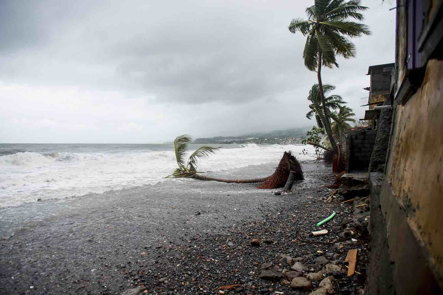 "<div class=""meta image-caption""><div class=""origin-logo origin-image wtvd""><span>wtvd</span></div><span class=""caption-text"">A picture shows an uprooted tree on the beach in Saint-Pierre, on the French Caribbean island of Martinique, after it was hit by Hurricane Maria, on September 19, 2017. (LIONEL CHAMOISEAU/AFP/Getty )</span></div>"