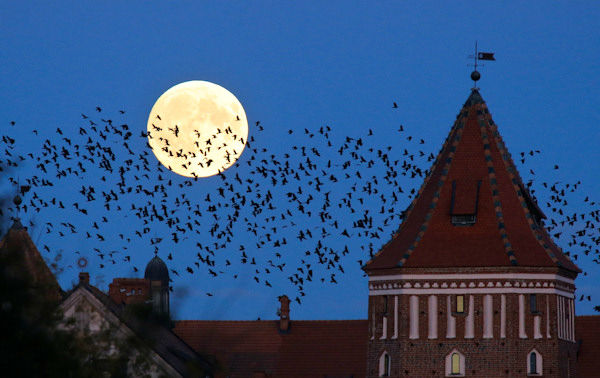 <div class='meta'><div class='origin-logo' data-origin='none'></div><span class='caption-text' data-credit='Photo/AP'>The supermoon is seen over Mir, Belarus, overnight on Sept. 27, the night of a lunar eclipse.</span></div>