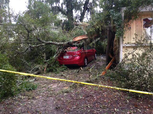 "<div class=""meta image-caption""><div class=""origin-logo origin-image none""><span>none</span></div><span class=""caption-text"">A Florida sheriff's office shared this photo of a tree that had fallen on a mobile home on Friday, saying no injuries had been reported. (Marion County Sheriff's Office/Facebook)</span></div>"