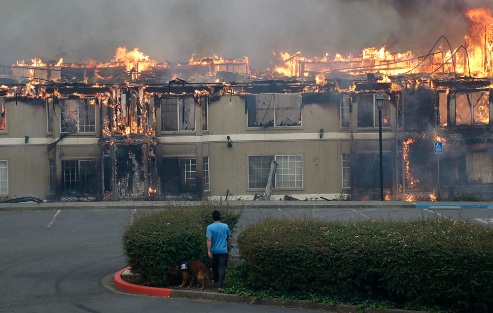 <div class='meta'><div class='origin-logo' data-origin='none'></div><span class='caption-text' data-credit='Jeff Chiu/AP Photo'>Rudy Habibe, from Puerto Rico, and his service dog Maximus walk toward a burning building at the Hilton Sonoma Wine Country hotel, where he was a guest, in Santa Rosa, Calif.</span></div>