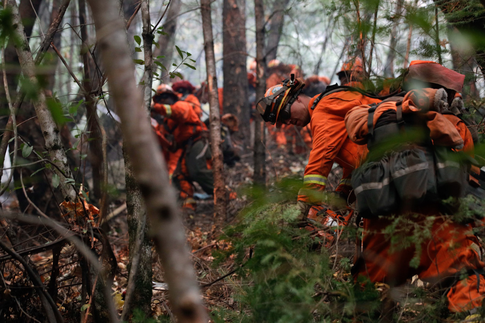 <div class='meta'><div class='origin-logo' data-origin='none'></div><span class='caption-text' data-credit='Jae C. Hong/AP Photo'>Inmate firefighters cut down trees along the Highway 29 as wildfires continue to burn Thursday, Oct. 12, 2017, near Calistoga, Calif.</span></div>