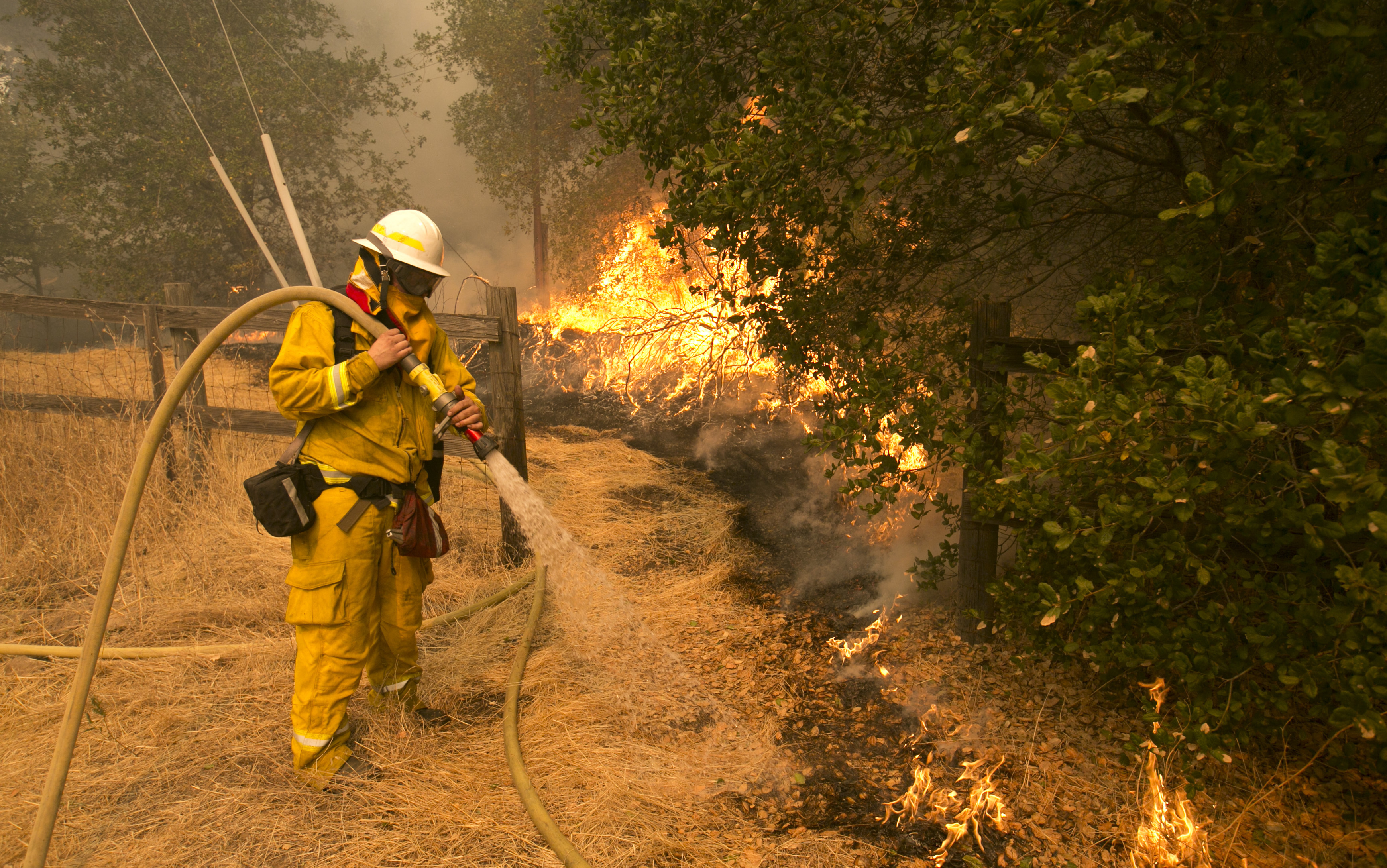 <div class='meta'><div class='origin-logo' data-origin='none'></div><span class='caption-text' data-credit='Rich Pedroncelli/AP Photo'>Napa County firefighter James George hoses down a fire line approaching a home Monday, Oct. 9, 2017, in Napa, Calif.</span></div>