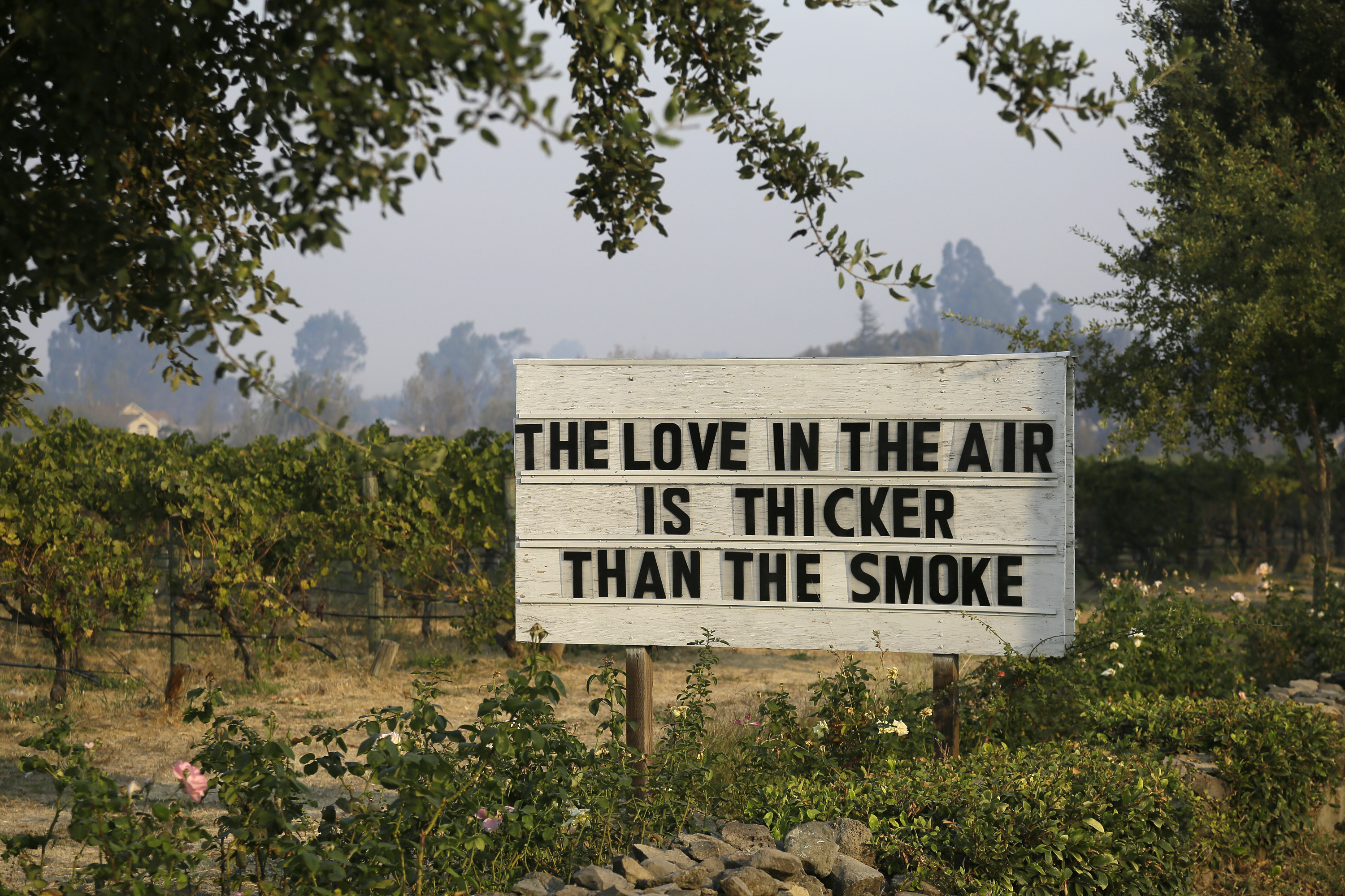 "<div class=""meta image-caption""><div class=""origin-logo origin-image none""><span>none</span></div><span class=""caption-text"">A sign about the recent wildfires stands in a vineyard outside the Cline Cellars winery Monday, Oct. 16, 2017, in Sonoma, Calif. (Eric Risberg/AP Photo)</span></div>"