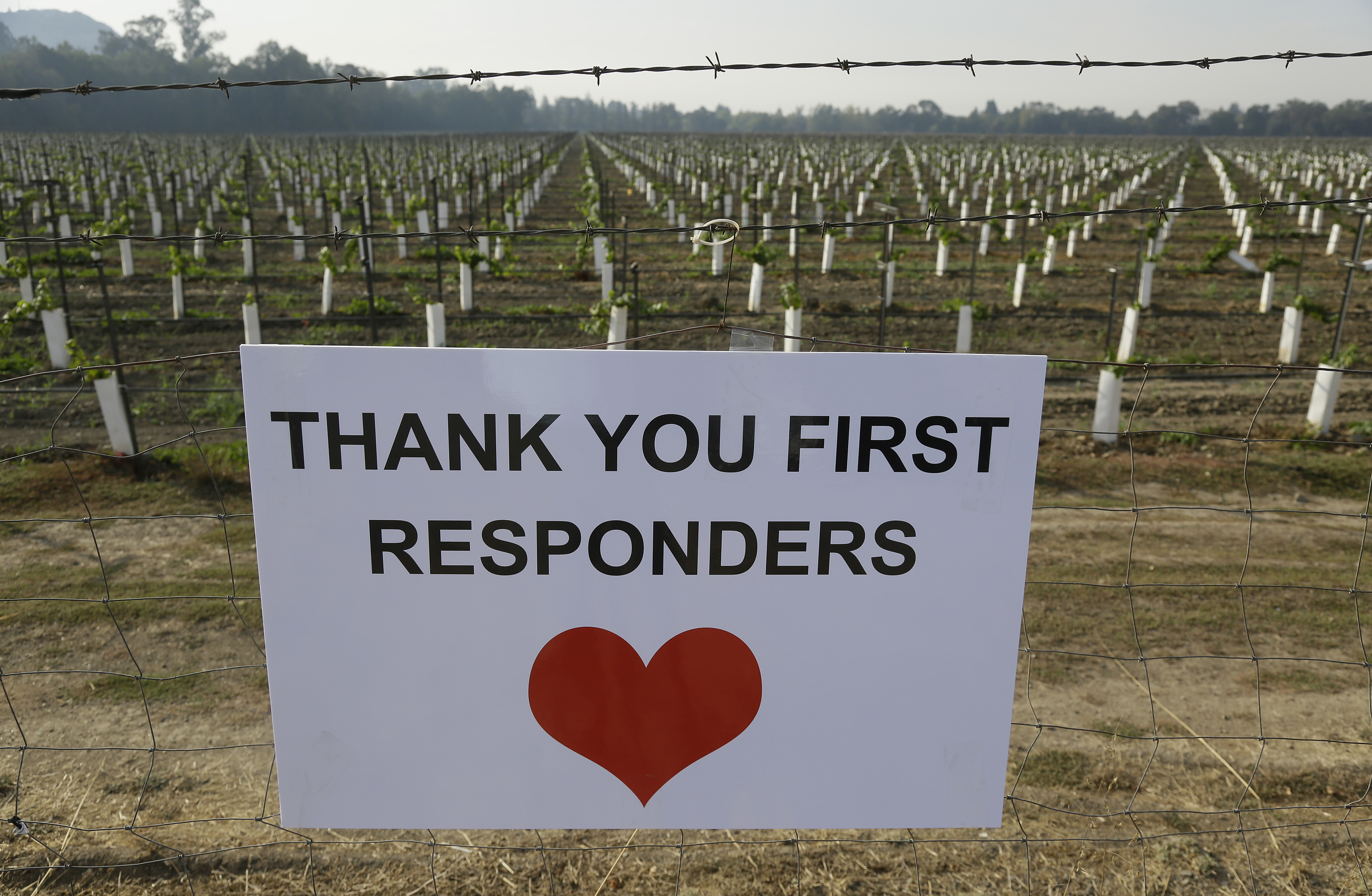 "<div class=""meta image-caption""><div class=""origin-logo origin-image none""><span>none</span></div><span class=""caption-text"">A sign thanking first responders hangs by a newly planted vineyard Monday, Oct. 16, 2017, in Napa, Calif. (Eric Risberg/AP Photo)</span></div>"