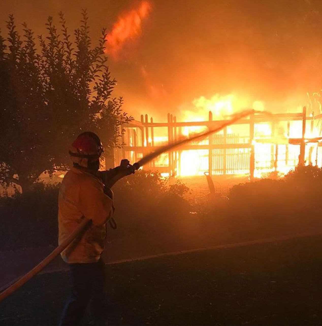 "<div class=""meta image-caption""><div class=""origin-logo origin-image none""><span>none</span></div><span class=""caption-text"">Windsor Fire posted this action shot and thanked the community for their support. (windsor_fire/Instagram)</span></div>"
