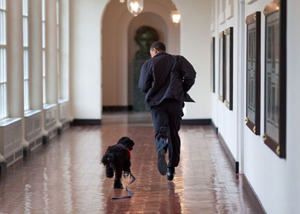 <div class='meta'><div class='origin-logo' data-origin='none'></div><span class='caption-text' data-credit='Pete Souza, Chief Official White House Photographer'>President Obama running with his dog Bo in the White House's East Wing.</span></div>