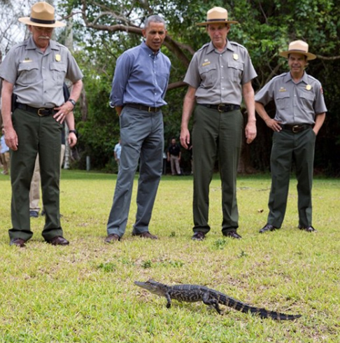 <div class='meta'><div class='origin-logo' data-origin='none'></div><span class='caption-text' data-credit='Pete Souza, Chief Official White House Photographer'>A cute and humorous photo of President Obama looking at a tiny alligator in Everglades National Park in 2015.</span></div>