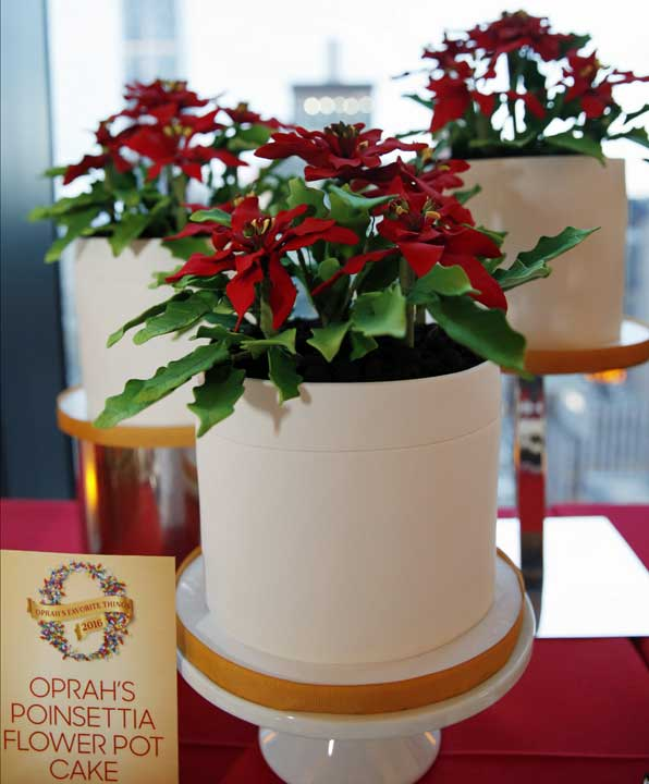 "<div class=""meta image-caption""><div class=""origin-logo origin-image ap""><span>AP</span></div><span class=""caption-text"">Oprah's Poinsettia Flower Pot Cake looks like a holiday plant, but is actually a chocolate cake with vanilla mousse. (AP Photo/Kathy Willens)</span></div>"