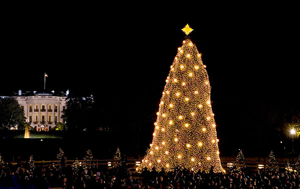 "<div class=""meta image-caption""><div class=""origin-logo origin-image none""><span>none</span></div><span class=""caption-text"">This Dec. 4, 2008 photo shows the National Christmas Tree, near the White House in Washington, illuminated during a ceremony. (J. Scott Applewhite/AP Photo)</span></div>"
