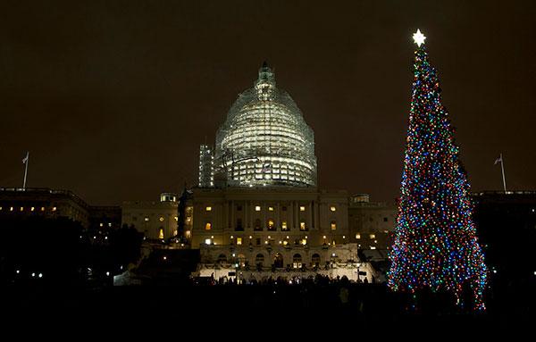 PHOTOS: Biggest Christmas tree lighting ceremonies around the ...