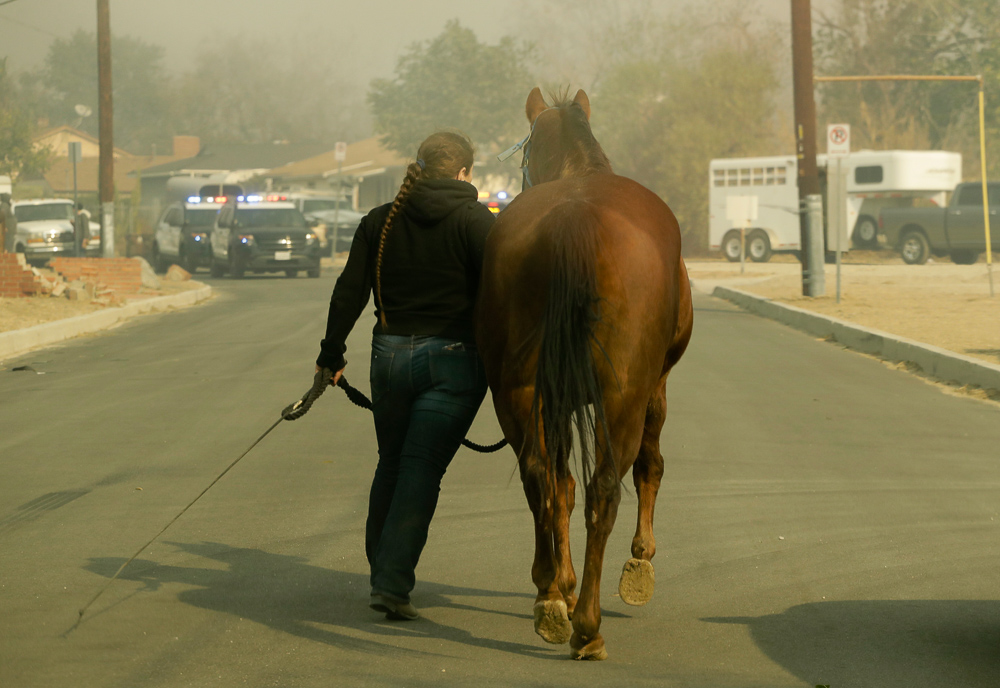 "<div class=""meta image-caption""><div class=""origin-logo origin-image none""><span>none</span></div><span class=""caption-text"">A woman evacuates her horse through smoke from a wildfire in the Lake View Terrace area of Los Angeles Tuesday, Dec. 5, 2017. (Chris Carlson/AP Photo)</span></div>"