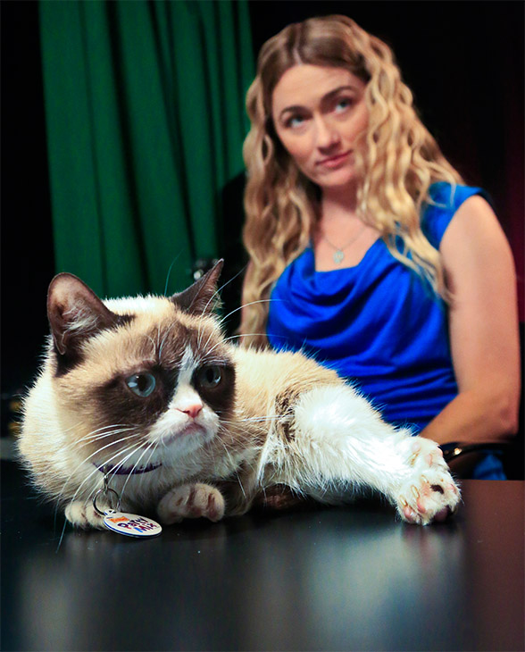 Grumpy Cat's Owner Quit Her Day Job, But Denies Claim The