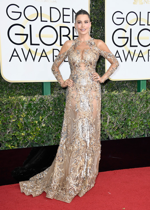 "<div class=""meta image-caption""><div class=""origin-logo origin-image none""><span>none</span></div><span class=""caption-text"">Actress Sofia Vergara attends the 74th Annual Golden Globe Awards at The Beverly Hilton Hotel on January 8, 2017 in Beverly Hills, California. (Frazer Harrison/Getty Images)</span></div>"