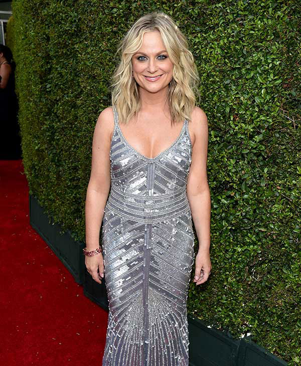 Amy Poehler <span class=meta>(John Shearer&#47;Invision for the Television Academy&#47;AP Images)</span>