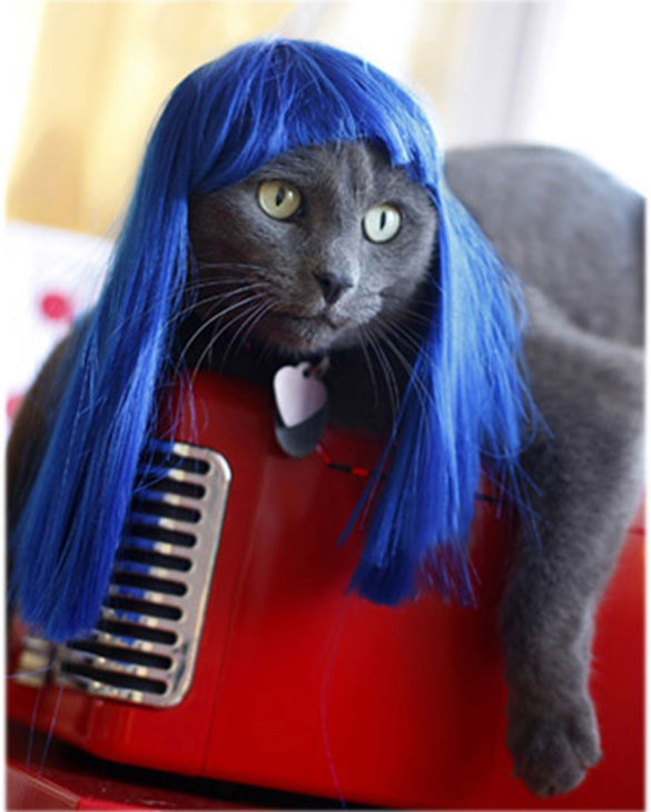 Rocks it better than Katy Petty. <span class=meta>Photo/KittyWigs.com</span>