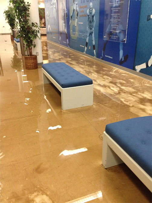 "<div class=""meta ""><span class=""caption-text "">Water flooded into the meeting rooms, as well. (miss_alexpham / Twitter)</span></div>"
