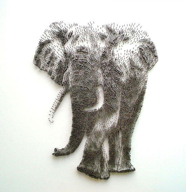 "<div class=""meta image-caption""><div class=""origin-logo origin-image ""><span></span></div><span class=""caption-text"">An elephant (Photo/David Foster)</span></div>"