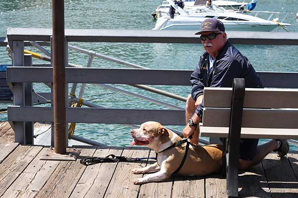 <div class='meta'><div class='origin-logo' data-origin='none'></div><span class='caption-text' data-credit='Shane Gibson'>A dog involved in the attack is held by an Avalon Harbor Patrolman.</span></div>