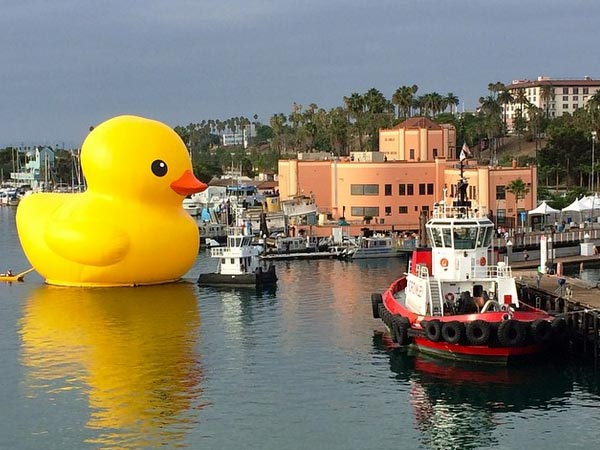 <div class='meta'><div class='origin-logo' data-origin='~ORIGIN~'></div><span class='caption-text' data-credit=''>The famous giant duck, designed by Dutch artist Florentijn Hofman, is seen at the Port of Los Angeles Wednesday, Aug. 20, 2014.</span></div>