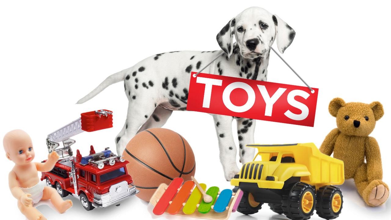Spark of Love Toy Drive - Donate toys