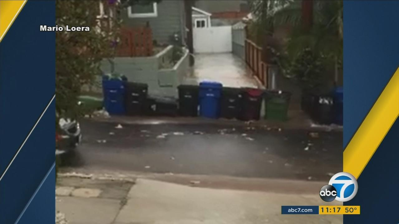 This parade of trash cans running wild in Highland Park was captured by ABC7 viewer Mario Lorea on Tuesday, Jan. 5, 2016.ABC7 viewer Mario Lorea