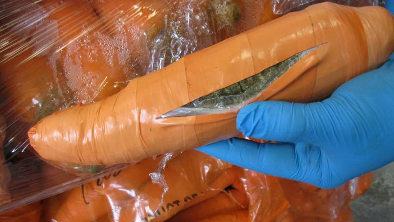 U.S. Customs and Border Protection agents in Texas caught smugglers trying to sneak in 2,393 pounds of marijuana disguised as carrots on Sunday, Jan. 10, 2016.