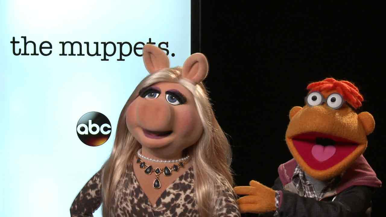There are changes in store for Kermit, Miss Piggy, Scooter, Gonzo and the rest of The Muppets.