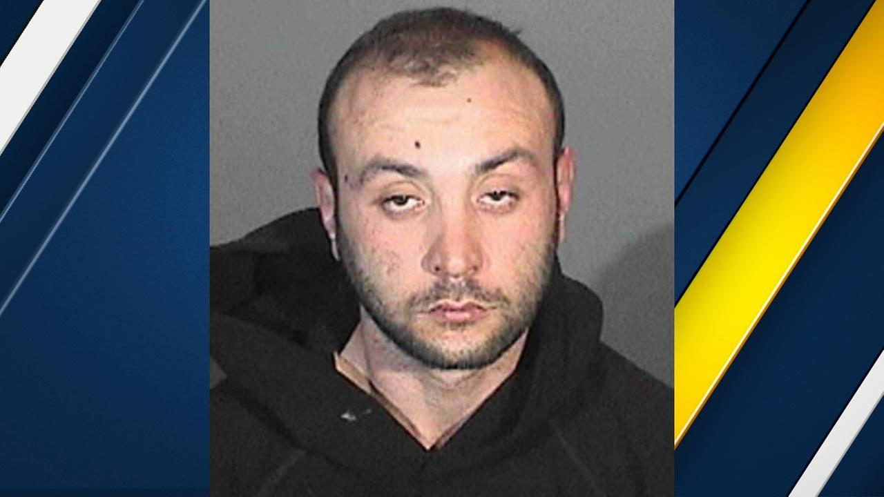 Hakob Torosyan, 28, of Glendale, is seen in this booking photo released by the Burbank Police Department.