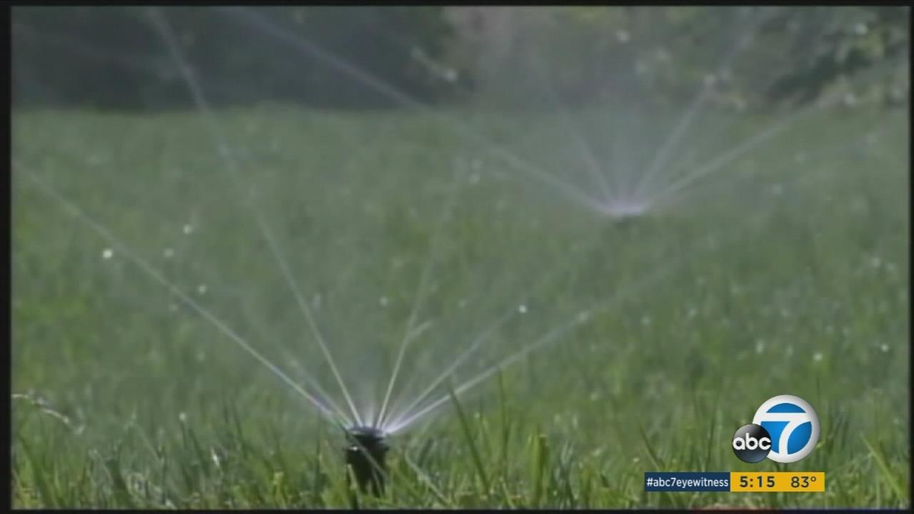 The Los Angeles Department of Water and Power has unveiled a plan that would, in the worst of cases, fine major water wasters up to $40,000 for not cutting back on their consumption.