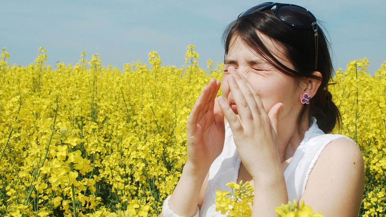 A woman sneezes in a field of wildflowers in a stock photo.