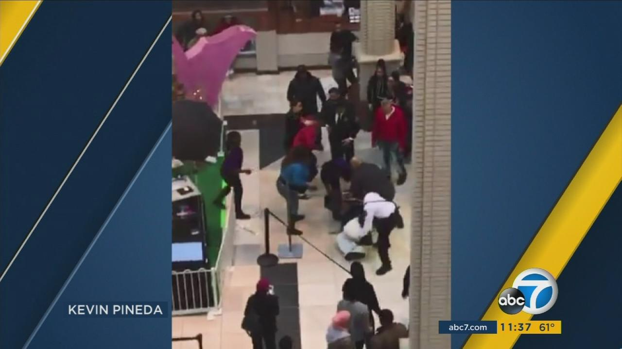 A video posted on social media shows a man dressed as the Easter bunny exchanging punches with a father at a New Jersey mall.