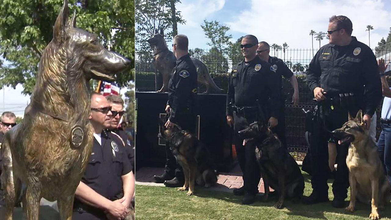 A life-size statue was erected at La Palma Dog Park in Anaheim Sunday, April 3, 2016 in honor of the citys brave K-9 officers.